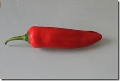 Red under